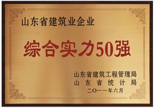 山东省建筑业企业 综合实力50强